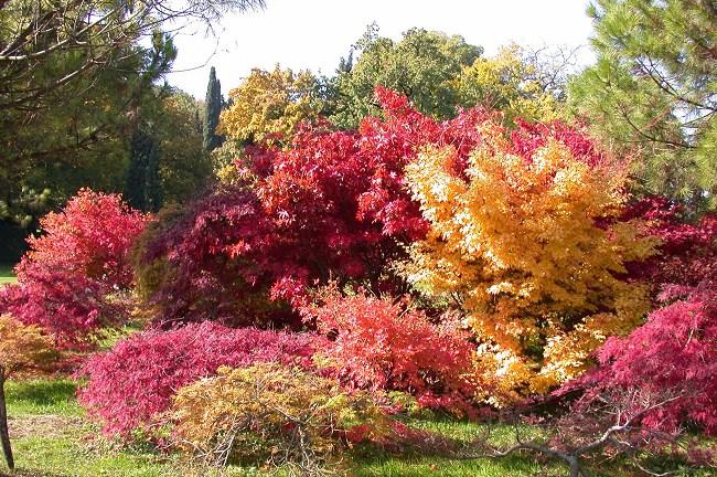 Offerta autunno in sirmione hotel smeraldo vicino al castellohotel smeraldo - Parco giardino sigurta valeggio sul mincio vr ...